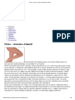 Pielea – Structura Si Functii _ Revista InfoCosmetica