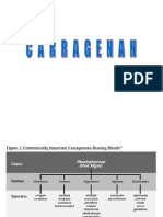 Carragenan pectinas 2013.ppt