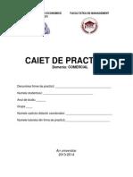 Caiet Practica Comercial