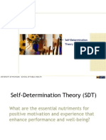 HBHE600_2008_08_Self-Determination Theory