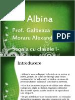 Prezent Are Albina