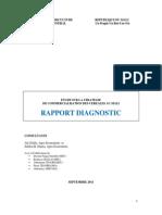 Rapport Diagnoctic Etude Commercialisation (1)