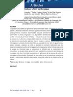 biodisel - cianobacterias