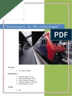 Seminario 5 y 6 Micro