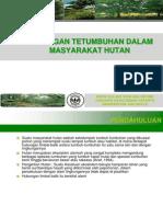 6. Hubungan Tetumbuhan Dalam Masyarakat Hutan