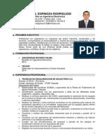 CV Dennis Espinoza 2014