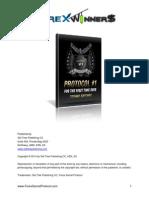 Protocol 1 Report Fsp