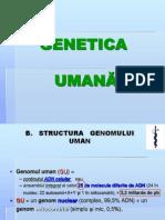 Curs 2 MG Organizarea Celulara a ADN