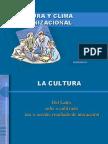 culturaorganizacional-091129224755-phpapp02