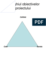 Manag.calit.proiecte