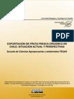 017 Exportacion Fruta Chile