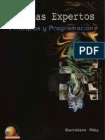 Joseph Giarratano & Gary Riley - Sistemas Expertos [3ra Edición]