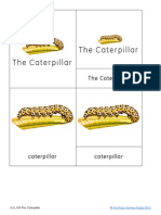 The Caterpillar Nomenclature and Definition Cards
