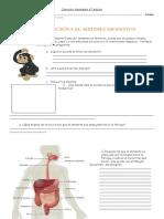 guía sistema digestivo 5° básico