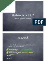 Histologie LP2 Epitelii Glandulare MNI 2011