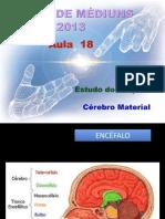 ( Espiritismo) - C M # Aula 18 # Estudo Do Psiquismo - Cerebro Material