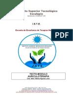 Texto Modulo Auriculoterapia