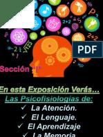 Ronda II - Exposiciones - Psicofisiologia