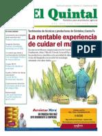 Quintal 17