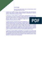 Casos Paradigmáticos de Bioética en Relacion Con La Medicina