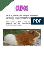 CUYOS