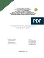 1-Tesis Satisfaccion Laboral- Ultima Correccion 12-05-14