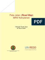 MRV Road Map