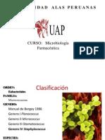 Micrococaceae-estafilococaceae__2014