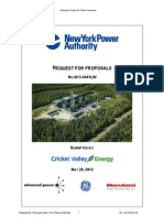 Cricket May 20 2013 Proposal PDF