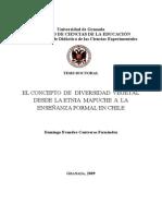 Fitomedicina Mapuche