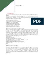 laprcticadelaauditoriasedivideentresfases-130407221534-phpapp02.docx