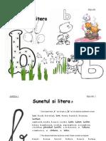 0_fise_de_lucru_b