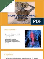 Biomec Cv Lumb