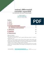 Equazioni Differenziali a Variabili Separabili e Urang-utang - Fioravante Patrone