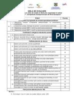 Grila Evaluare Plan Afacere
