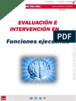 2013 JULIO Funciones Ejecutivas