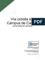 Problemas en el carril bici del Campus Universitario de Cartuja (Granada) y propuestas de mejora