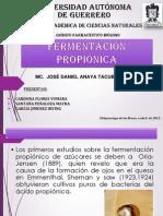 165638699 Fermentacion Propionica 2