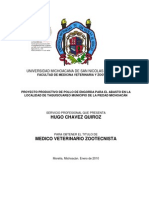 Proyecto Pollos de Engorda Michoacan