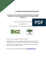 A Amazônia No Caminho Da Transição Agríc