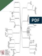 MapaMental LPI 101