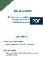3 Perfil de Auditor