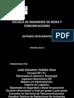 Sistemas Inteligentes UTP 2013 III(8)