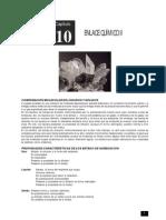 10 Enlace Quimico II