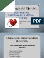 Fisiología Del Ejercicio RESPUESTAS CARDIOVASCULARES [Autoguardado]