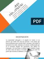 MADRES SUSTITUTAS (1)(1)