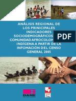 Afro_indicadores_sociodemograficos_censo2005.pdf