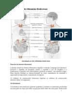 As Glândulas