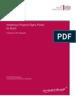 ipr-guide-brazil.pdf