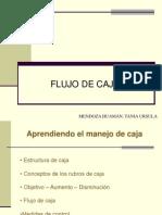 Flujo de Caja1